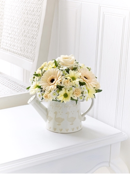 Picture of Little Duckling Watering Can - Cream