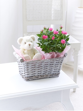 Picture of Baby Girl Gift Basket