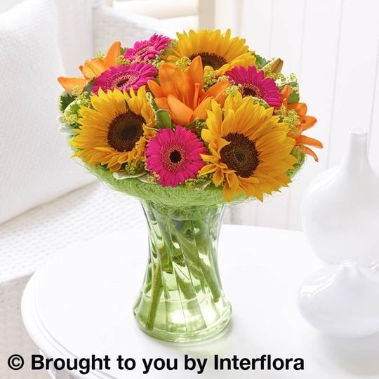Picture of Sunflower Perfect Gift Lge