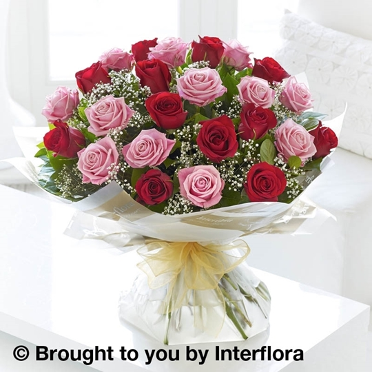 Picture of Heavenly 24 Rose Pink and Red Rose Hand-tied