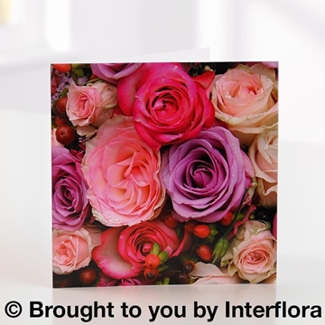 Picture of Pink Rose Greetings Card