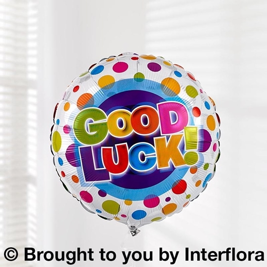 Picture of Good Luck Balloon