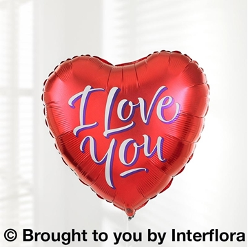 Picture of I Love You Balloon