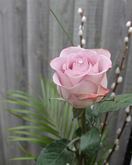 Picture of Single Lilac Rose In Vase