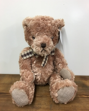 Picture of Benjamin Bear