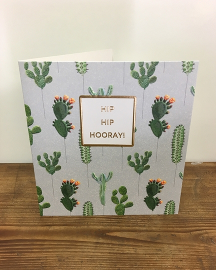 Picture of Succulent Birthday Card