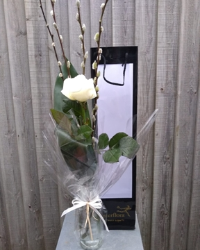 Picture of Single White Rose In Vase