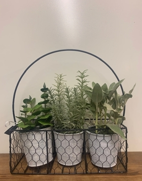 Picture of Set of 3 Assorted Herbs in Tins in Metal Carrier