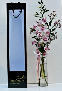 Picture of  classic orchid vase
