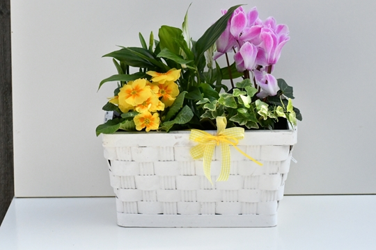 Picture of mothers day planted basket