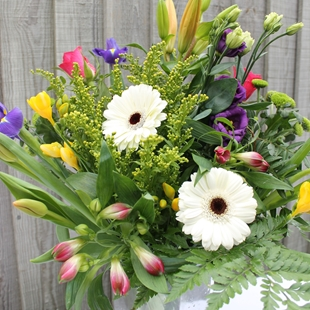 Picture for category LETTERBOX FLOWERS