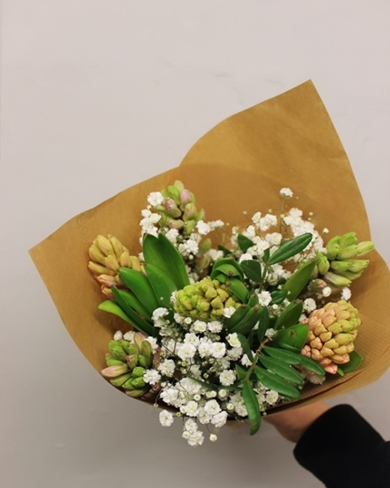 Picture of HYACINTH and GYPSOPHILA