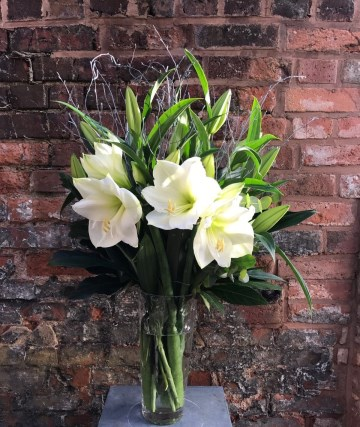 Amaryllis &Lily Vase Display