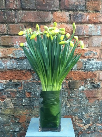 Double Daffodil Vase Display