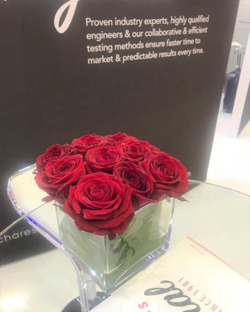 Red Rose Cube Vase Display For ICE Totally Gaming