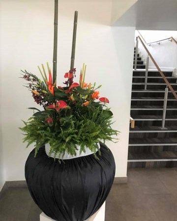 Tropical Planter For Furniture Show Nation Exhibition Centre  NEC Birmingham