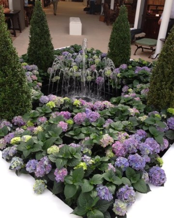 Buxus And Hydrangea Water Feature Olympia London