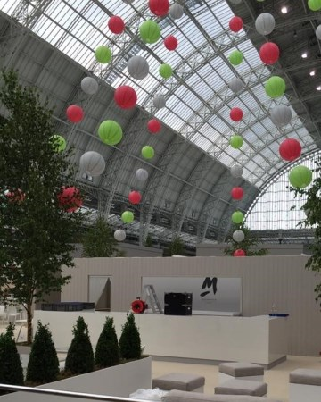 Buxus - Trees - Decoration Design At Olympia London