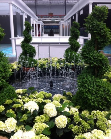 Spiral Buxus And Hydrangea Water Feature - London